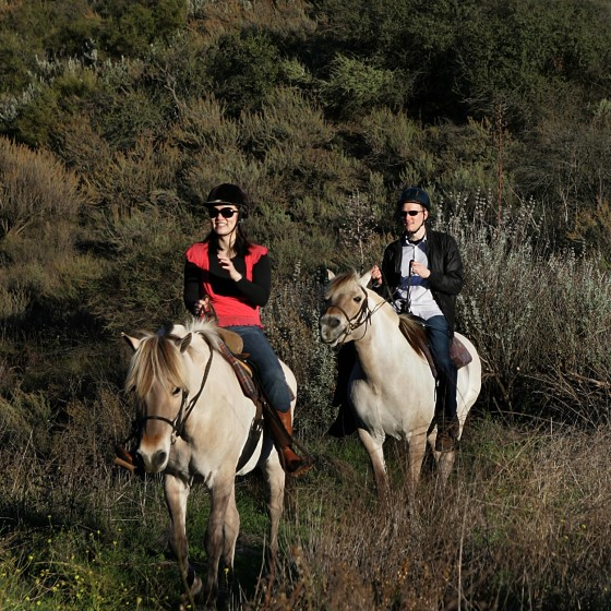 1125 Stacey&Josh.trail riding (2)