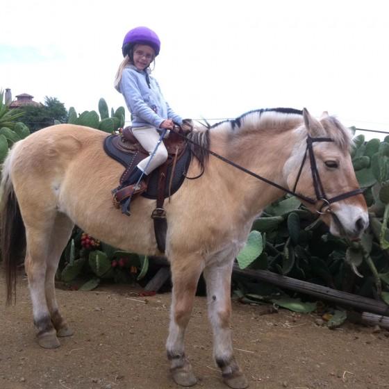 Cornilus_Horse